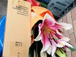 9.10,《�o自己的�日���墒祝ㄐ马�)》文/�R琪