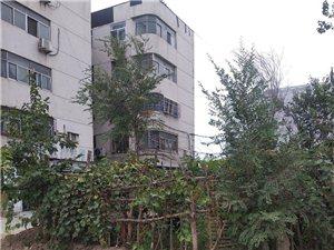 交通局南。在禹城市���l活�又校�城市面貌�ㄈ灰恍拢�但仍有一些�l生死角需要清理。
