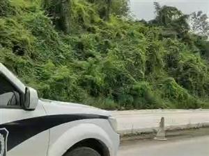 江秀路上一辆挂车与小车撞上了