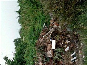 这就是美丽乡村,所有垃圾堆在我家门口的吗?茶场中转站旁边的路上。