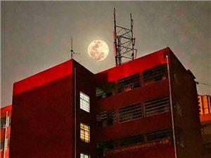 月是故�l明