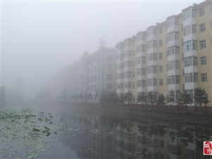 今天大雾弥漫