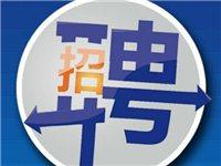 寻乌县29类岗位共计76个事业编制面向社会公开招聘