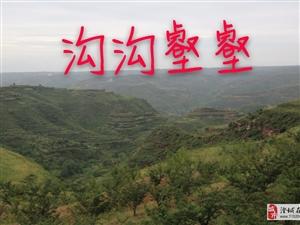 《水莲古村●秋景》文/金��