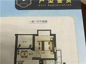 長安濱海灣新區中心首付19.8萬買濱海藍灣5棟花園社區與台湾一河之隔