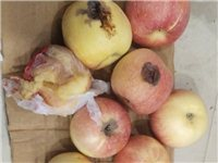 太坑了!潢川西关某家超市买的一箱苹果,打开一看气愤不已...