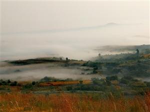 有些日子没上山了,今天终于得空。秋日的山上山花烂漫,野果飘香。山脚下还有薄雾缭绕,美若仙境。身边不时
