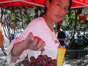 大泽山的葡萄就是甜