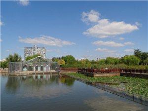 蓝天白云下的人民公园