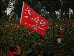 今天下午溧水在线网友南京玫瑰园联谊活动随拍