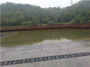 �雨的早晨如此美��