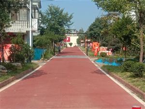 清湖淘��村的美景