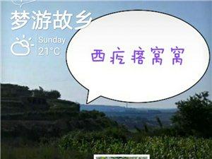 【回����x�B】《古徵漫�.西疙瘩�C�C》(��)文/�L逍�b
