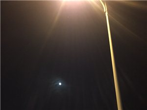 想老家的月亮了