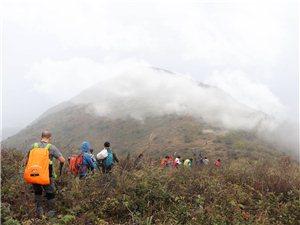 曹家寨山,位于河南固始�h最南端,大�e山北麓,海拔1025.6米。是我�h境�鹊谝桓叻濉2芗艺��L光。