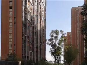 滁州电动车气球迎亲有创意非常有特色低调奢华值的借鉴学习