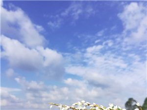 久违的蓝天白云