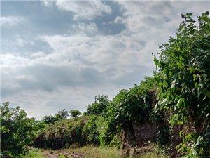 我们代寺镇勇谋村三队的路啥时候能修哦,要不要村民集资。