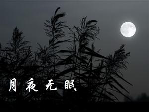 �R江仙?月冷今宵文/��生(�~林正�)