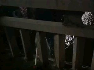 交通桥头水管坏了,水一直在流