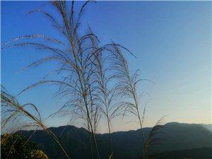 游天竺�r�峰看日落