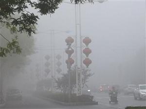 今晨驻马店迎来大雾