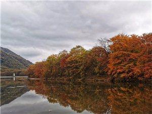 唐多令.游秋陈沁园平顶山晚秋登高,秋色五彩斑斓,连绵不断与