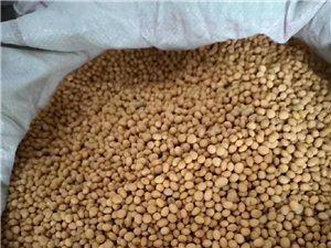 出售本地大米,�S豆,�豆,糯米
