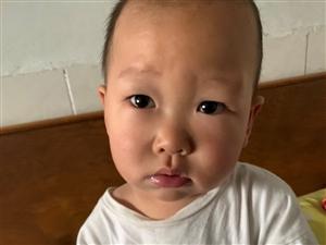 宝宝:我妈给我断奶了,太难了!