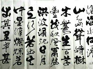 署名书法家庄传林书法传人庄琦书法欣赏