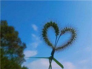 《秋天的情�选肺�/金��