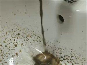 请问白大山水厂的领导们这水能吃嘛?