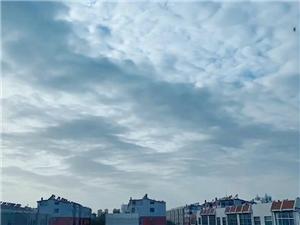 今日-博城云