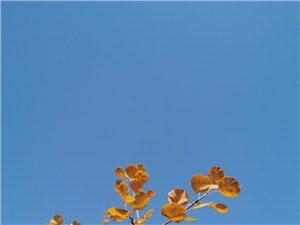 视野有宽度青蛙站在井底看到的只能是井口那么大的天,所谓视野就是站得高,看?#36855;叮?#19981;要被眼前的假象所迷