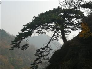 冬至登泰山