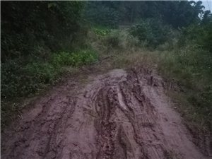 现在公路不是村村通,建设好四好农村路吗?怎么回事?现在公路不是村村通,建设好四好农村路吗?为什么狮