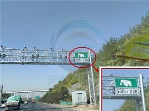 """河南高速上有""""大象""""出没?"""