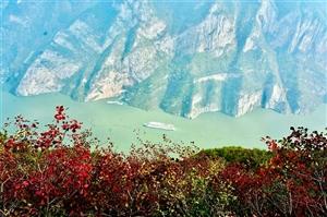 美景欣赏:三峡红叶!
