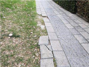 滨江公园人行道路基下沉