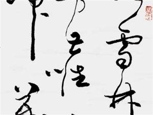 秦野鲁人草书作品《元王冕诗白梅》