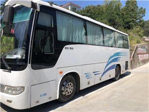 专业旅游客车租赁