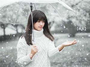 总有一场雪,为你而来作者:书生