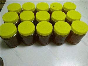 出售野生蜂蜜、蜂蛹.