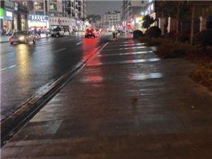 一场冬雨乐万家