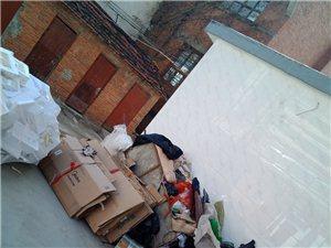 �h政府��出力出�X清走的垃圾山,又被清��工堆上垃圾,�有�P�T口管理一下,否�t很快又成垃圾山。