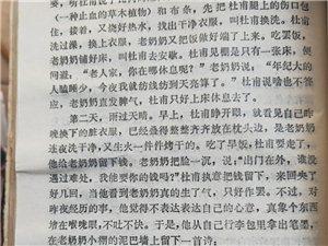潢川民�g故事(9)――杜甫店的�髡f