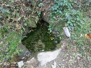 古老的山泉水依然甜美