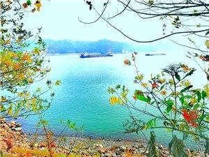 �L江河岸的�L景