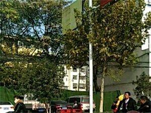 突�l:弋�路金星社�^路口又出交通事故,�瓶�撞出十余米�h,��者倒地。。。。。