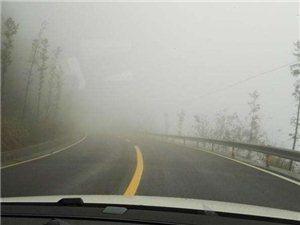 雾??????大安全出行